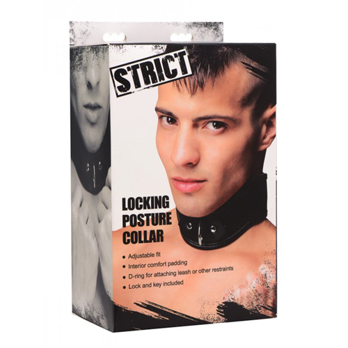 Strict Locking Posture Collar4